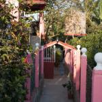 Walkway from the street back to the casa