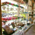 We have your Clearwater Beach souvenirs covered!