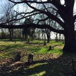 Old Newtonia Civil War Cemetery