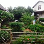 Garden and guest house in back