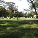 This is the best place for camping.  In the evening you get chance to see hippos