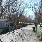 Foto de Camping Internacional Aranjuez