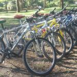 The best well maintained bikes you only get them at Fisherman's Camp