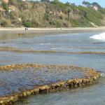 tidal beach table