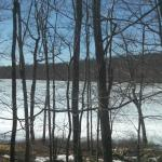 Lake view from Unit 1024