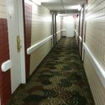 Hallways, Tropical Inn Hotel and Conference Centre  |  5621 44th Street, Lloydminster, Alberta