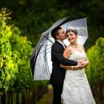 Wedding photography in the vineyard