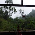 Photo de Rambala Jungle Lodge