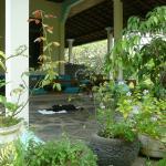 die schöne Terrasse dient den Gästen als Speisesaal