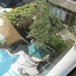 Outdoor Courtyard Pool Area