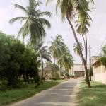 Rue longeant le Perroquet à Ziguinchor