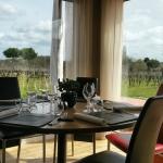 Fantastic lunch overlooking the vineyard at La Table de la Bergerie.