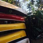 Canoes in the backyard