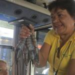 Our guide, the amazing Alma T., with the huge shrimp she brought onboard.