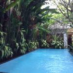 Beautiful relaxing pool area