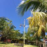 Zipline swing