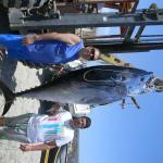 tonno pescato da NICOLA