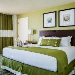 Guest Room King WView