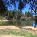 Lake Gregory area