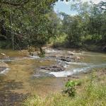 Elijio Panti National Park