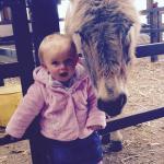 Zara and Ginny the donkey