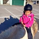 One of kids' activity ; ridding a pony