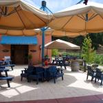 Our beautiful patio