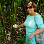 Paradise Tropical Gardens