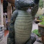 Blue Sky Crocodile Land (Long Xuyen Crocodile)