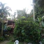 Areas ajardinadas, vista desde nuestra habitacion