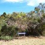 Signage along road for cottages