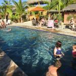 "Garden-like pool area is a great place to ""hang out""."