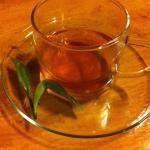 Tea Nest
