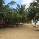 Jeanie's beach front cabanas