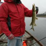 Some good catches on Lough Key!