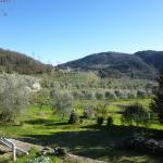 the view from the fattoria