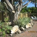 Photo de Liberty Garden Suites