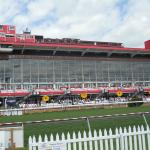 Grand stand seen from the Turfside Terrace.