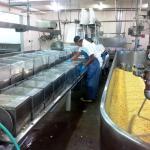Loleta Cheese Factory Foto