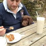 Even the puppy thought it was the best carrot cake ever !