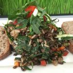 Lentil & wild rice salad. Nice warm salad.