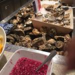fresh oysters!..