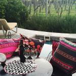 Foto de Cavas Wine Lodge