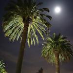 Marin Lodge_close-to-full moon