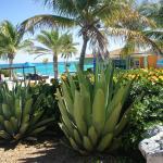 Foto de Sky Beach Club