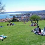 Distesa d'erba presso parco Rocca di Arona