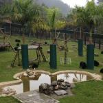 Vietnam Bear Sanctuary