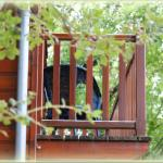 Balcon d'un des chalets