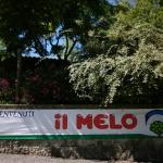 Foto di Camping Il Melo