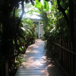 The walkway to the B & B rooms